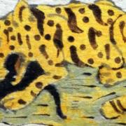 Tigre Catazonia